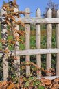 Free Wooden Fence Royalty Free Stock Photo - 35316605