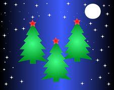 Free Christmas Tree Stock Image - 35310401