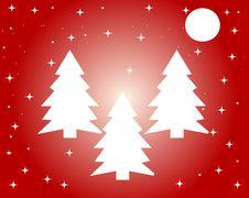 Free Christmas Trees Royalty Free Stock Photos - 35310608