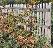 Free Wooden Fence Royalty Free Stock Images - 35316989