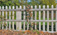Free Wooden Fence Royalty Free Stock Image - 35317056