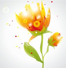 Free Transparent Flowers Royalty Free Stock Images - 35319759