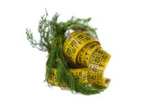 Free Centimeter And Dill Royalty Free Stock Photos - 35324268