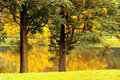 Free Autumn Landscape Royalty Free Stock Photos - 35334518