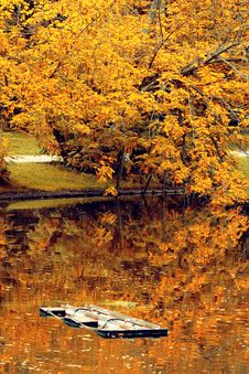 Free Autumn Tree And Lake Stock Photo - 35334270