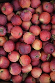 Free Red Apples Background Stock Photography - 35336962