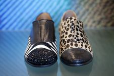 Ladies Shoes Stock Images