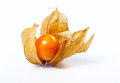 Free One Cape Gooseberries Royalty Free Stock Image - 35352786
