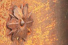Free Macro_detail1. Iron Flower Stock Image - 35358671