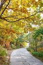 Free The Quiet Crook Path _ Autumnal Scenery Royalty Free Stock Photography - 35367347