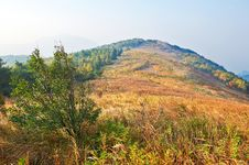 Free The High Autumn Mountain Meadow Royalty Free Stock Photo - 35366725