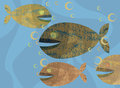 Free Fishes Royalty Free Stock Photo - 35370965