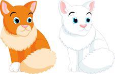 Free Cat Cartoon Stock Photos - 35370213