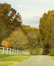 Free Country Road Stock Images - 35392034