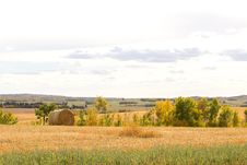 A Round Bale On Farmland Royalty Free Stock Photo