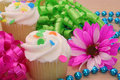 Free Cupcakes With Flower Stock Photos - 3546743