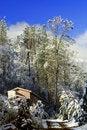 Free Winter Lodge In Yosemite Stock Image - 3546931
