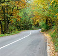 Free Curved Road Royalty Free Stock Photo - 3546975