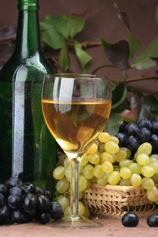 Free Wine Composition White Wine Stock Photos - 3540283