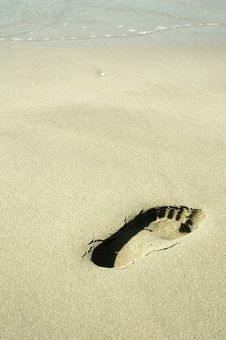 Free Footprint On A Beach Royalty Free Stock Photography - 3541007