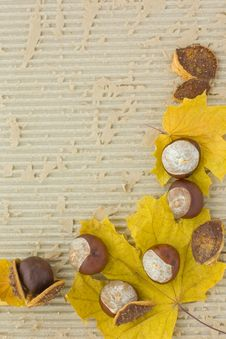 Free Autumn Frame Stock Image - 3541181