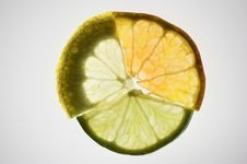 Free Lime, Orange And Lemon Royalty Free Stock Image - 3543836