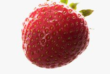 Free Strawberry Stock Photos - 3544013