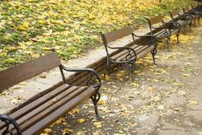 Free Autumn Benches In The Park Stock Photos - 3544503