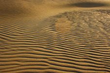 Free Curved Sand Dunes Royalty Free Stock Photography - 3548627