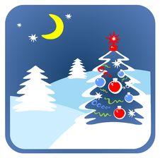 Christmas Fur-tree Stock Image