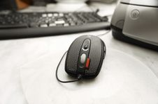 Free Mouse Stock Image - 3549731
