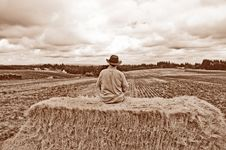 Free Man With Cowboy Hat Sitting On Bale Of Hay With Sepia Tone Royalty Free Stock Image - 35400836