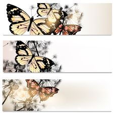 Free Abstract Brochures Set In Floral Style With Butterflies Royalty Free Stock Image - 35403216