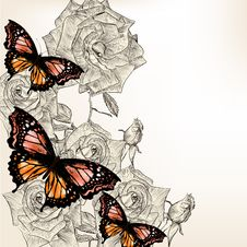 Free Floral Design With Hand Drawn Roses And Butterflies Stock Image - 35403921