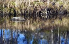Free Abstract Rock And Reflections Stock Photography - 35409352
