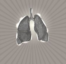 Free Lungs Stock Photos - 35413943
