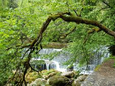 Free Auvernier Falls Royalty Free Stock Photos - 35438468