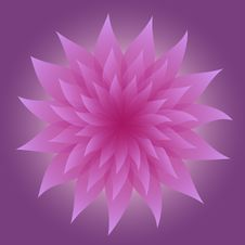 Free Lilac Flower On Violet Background Royalty Free Stock Photos - 35449438