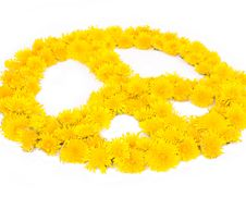 Free Peace, Flower Symbols Royalty Free Stock Photos - 35454098