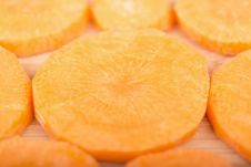 Free Carrot2 Royalty Free Stock Photography - 35456937