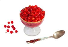 Free Viburnum Berries In Syrup On A White Background. Stock Photography - 35457522