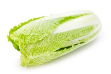 Chinese Cabbage On White Royalty Free Stock Photo