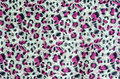 Free The Fabric Of Motifs Leopard Royalty Free Stock Images - 35485379
