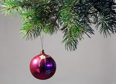 Free The Decoration Of Christmas Trees. Stock Photos - 35489493