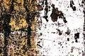 Free Grunge Painted Brick Wall Royalty Free Stock Photos - 3556638