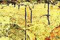 Free Grunge Painted Brick Wall Royalty Free Stock Image - 3556656