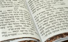 Free Bible Stock Photo - 3554360