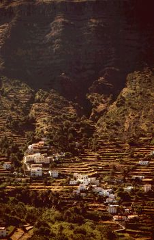 Free Agricultural Terraces Gomera Royalty Free Stock Photo - 3554525