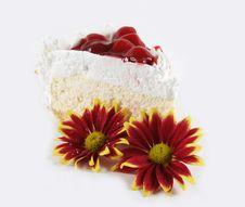 Free Cake Stock Photo - 3555370