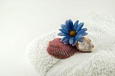 Free Aroma Therapy Stock Photos - 3555573